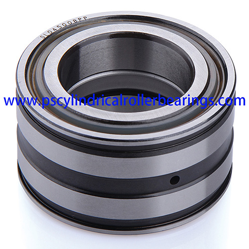 SL045017PP Sealed Cylindrical Roller Bearing
