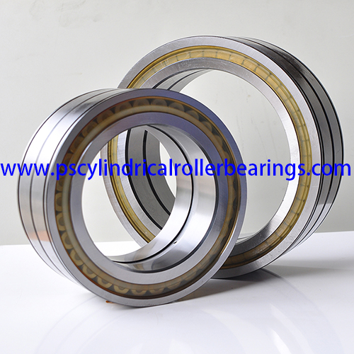 SL04170PP Sealed Cylindrical Roller Bearing