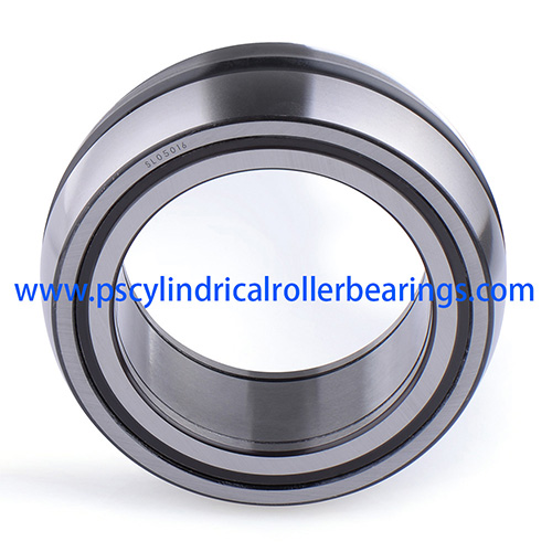 SL05048E Sealed Cylindrical Roller Bearings