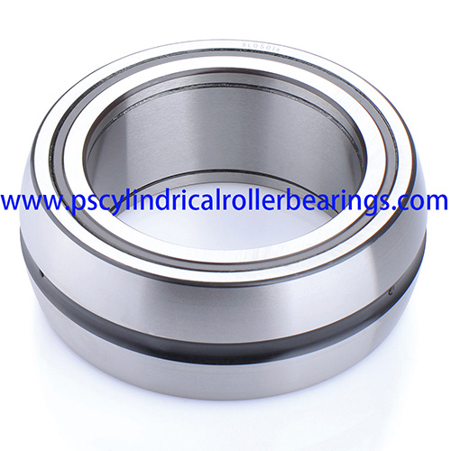 SL06044E Spherical Full Complement Cylindrical Roller Bearing