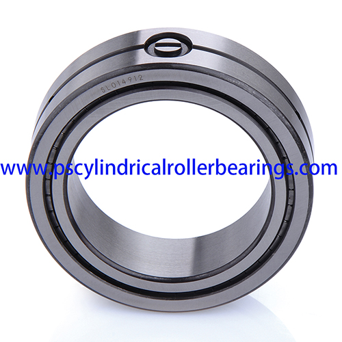SL014880 Double Row Cylindrical Roller Bearings