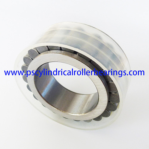 RSL182312 Full Complement Cylindrical Roller Bearings