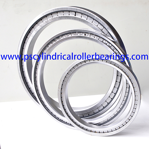 SL181896 Single Row Full Complement Cylindrical Roller Bearing
