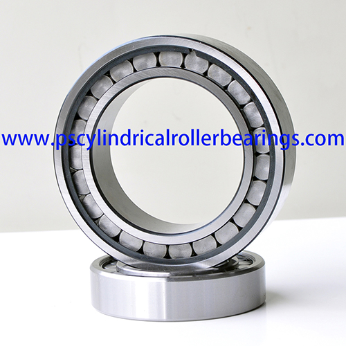 SL183007 Single Row Full Complement Cylindrical Roller Bearings